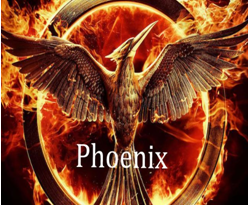 How to Install Phoenix on Kodi 2017