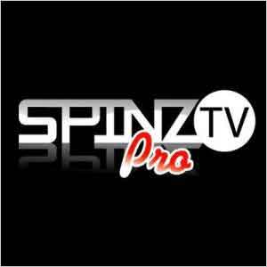 How to Install Spinz TV on Kodi Krypton 17 and Jarvis 16