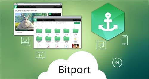 Bitport-to-obtain-online-anonymity