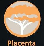 Best kodi addons Placenta