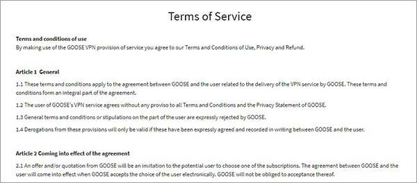 Goose-VPN-Logging-Review