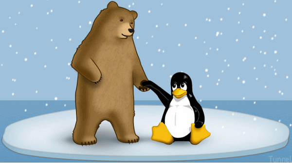 TunnelBear-for-Linux