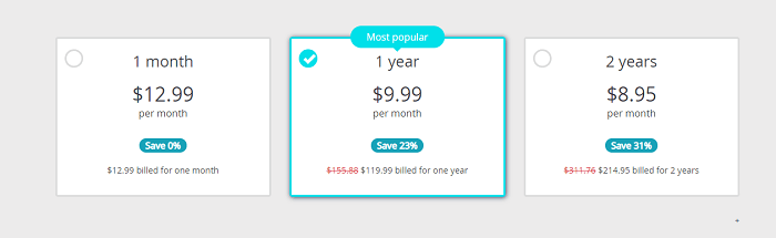 Perfect-Privacy-VPN-Pricing